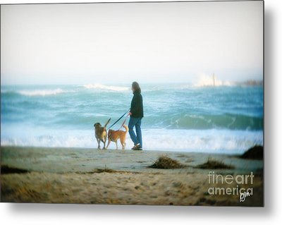 Metal Print featuring the photograph Beach Dogs by Phil Mancuso