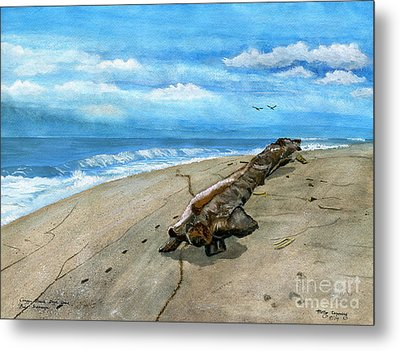 Metal Print featuring the painting Beach Drift Wood by Melly Terpening