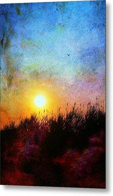 Beach Dune Metal Print by Laura Fasulo
