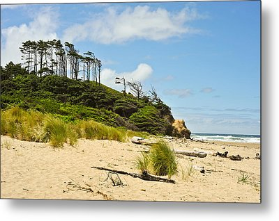 Beach Forest Metal Print