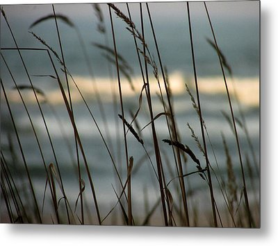 Beach Grass Metal Print by Kimberly Mackowski