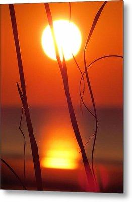 Beach Grass Sunrise Metal Print by Nikki McInnes