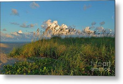 Beach Greenery Panorama Metal Print by Bob Sample