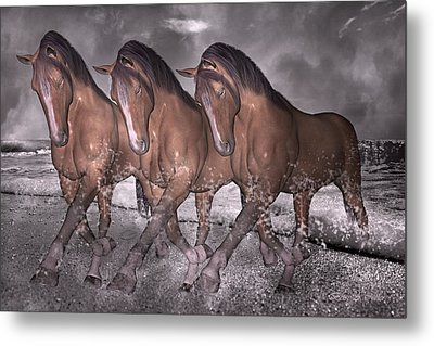 Beach Horse Trio Night March Metal Print