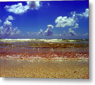 Metal Print featuring the photograph Beach by J Anthony