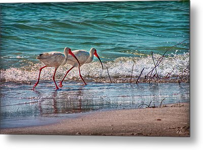 Beach Jogging In Twos Metal Print by Hanny Heim