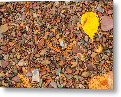 Beach Pebbles Of Montana Metal Print by Brenda Jacobs