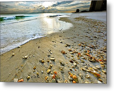 Beach Sunset And Seashells Metal Print