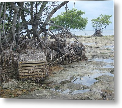 Metal Print featuring the photograph Beached Lobster Trap by Robert Nickologianis