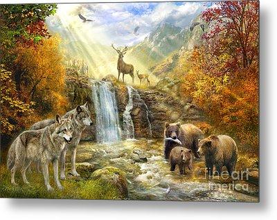 Bear Falls Metal Print by Jan Patrik Krasny