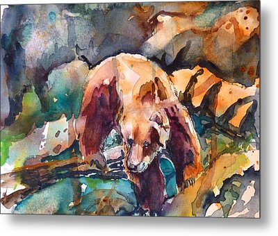 Bear In Rocks Metal Print