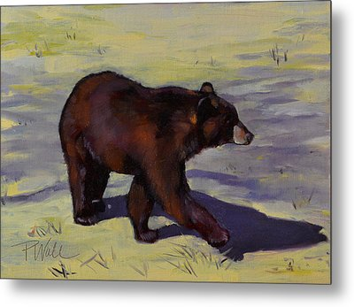 Bear Shadows Metal Print