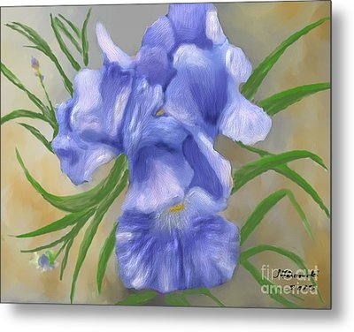 Bearded Iris Blue Iris Floral  Metal Print by Judy Filarecki