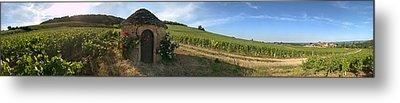Beaujolais Vineyard, Saules Metal Print by Panoramic Images