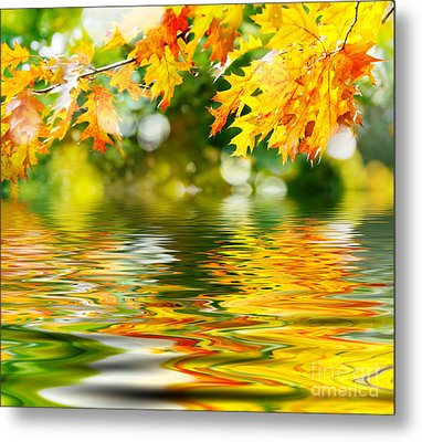 Beautiful Autumn Leaves Metal Print by Boon Mee