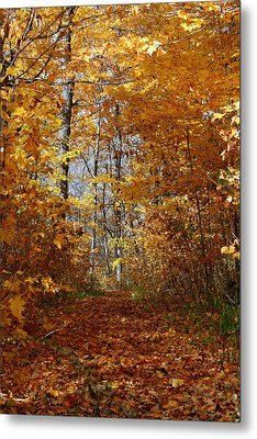 Beautiful Autumn Sanctuary Metal Print by Kay Novy