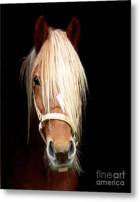 Beautiful Bella Metal Print by Wendy Coulson