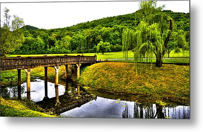 Beautiful Blowing Spring Park Metal Print by David Patterson