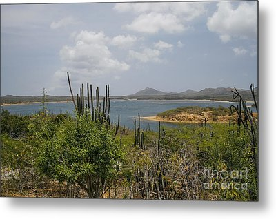 Beautiful Bonaire Metal Print