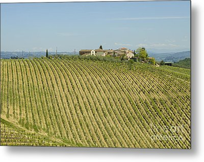 Beautiful Chianti Region In Tuscany Metal Print by Patricia Hofmeester