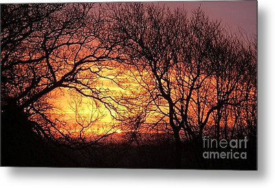 Beautiful Dawn Metal Print