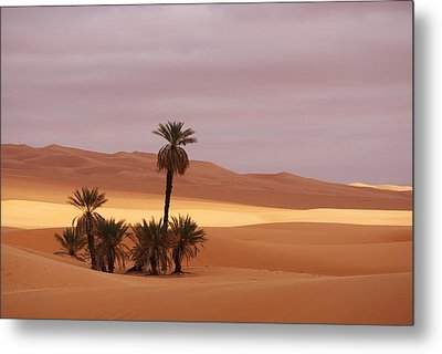 Beautiful Desert Metal Print by Ivan Slosar
