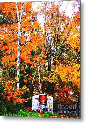 Beautiful Fall Season Metal Print