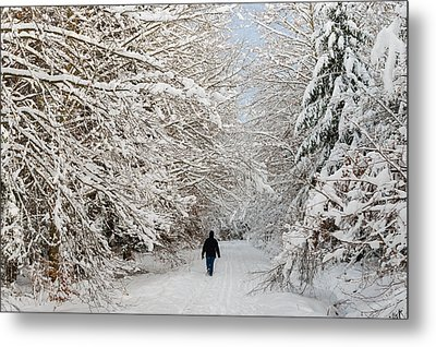 Beautiful Forest In Winter With Snow Covered Trees Metal Print by Matthias Hauser