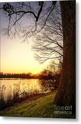 Beautiful Lake Metal Print