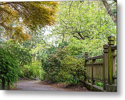 Beautiful Pathway Metal Print by Priya Ghose