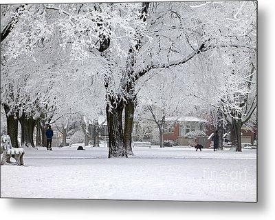 Beautiful Winter Park Metal Print by Charline Xia
