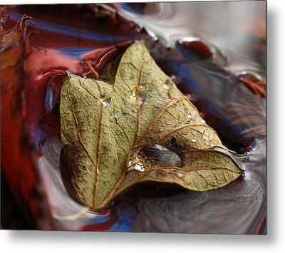 Beautiful World Metal Print by Juergen Roth