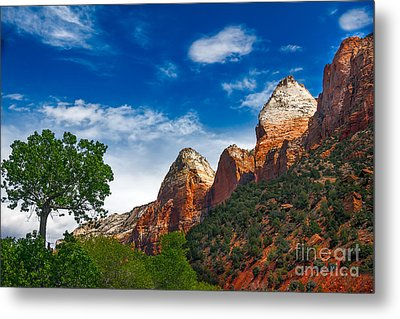 Beautiful Zion Metal Print by Robert Bales