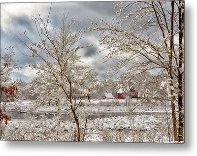 Beauty After The Storm Metal Print by Tricia Marchlik