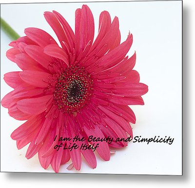 Beauty And Simplicity Metal Print by Patrice Zinck