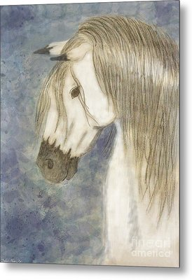 Beauty And Strength1 Metal Print by Debbie Portwood