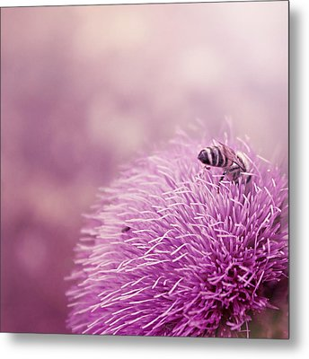 Beauty And The Bee Metal Print by Trish Mistric