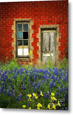 Beauty And The Door - Texas Bluebonnets Wildflowers Landscape Door Flowers Metal Print by Jon Holiday