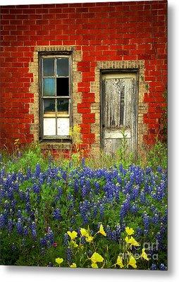 Beauty And The Door - Texas Bluebonnets Wildflowers Landscape Door Flowers Metal Print
