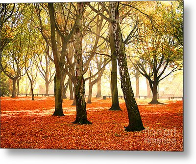 Metal Print featuring the photograph Beauty Autumn by Boon Mee