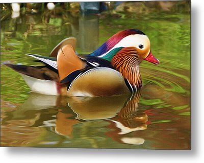Beauty In The Pond Metal Print by Ayse Deniz