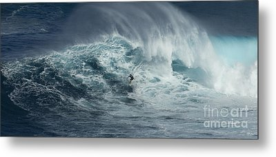 Beauty Of The Extreme Metal Print by Bob Christopher
