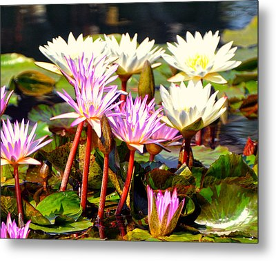 Metal Print featuring the photograph Beauty On The Water by Marty Koch