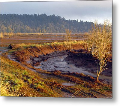 Metal Print featuring the photograph Beauty Revealed At Low Tide by I'ina Van Lawick