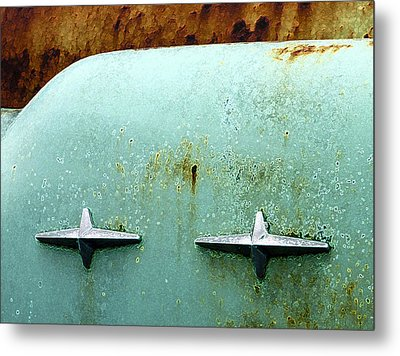 Beauty With Age Metal Print by Jean Noren