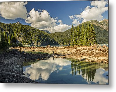 Boundless Beauty Metal Print by Aaron Bedell