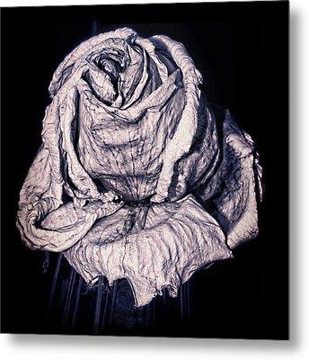 Beauty Wrinkle Metal Print by Kristi Swift