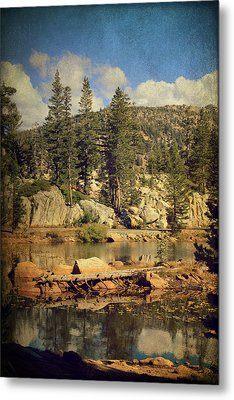 Beauty You Find Along The Way Metal Print by Laurie Search