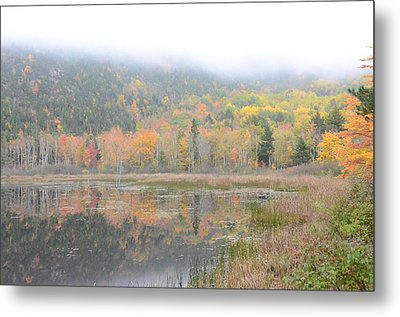 Beaver Lake Maine Metal Print