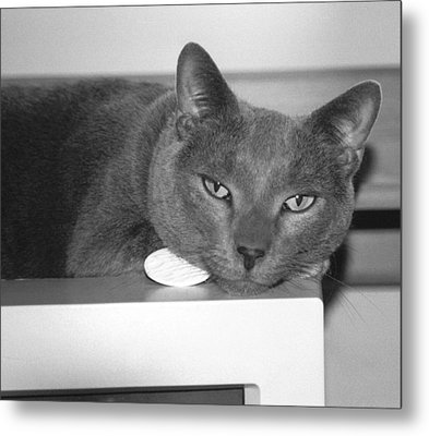 Bedroom Eyes Metal Print